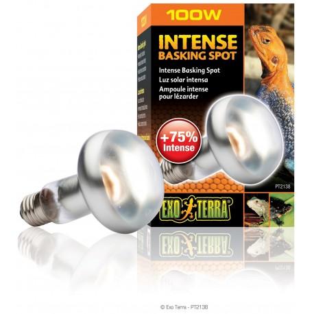 Exo Terra Intense Basking Spot 100 Watt Lampada per Rettili