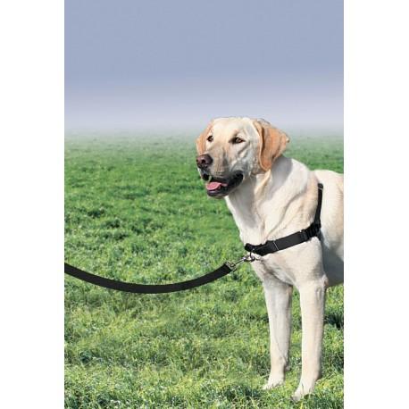 Petsafe Pettorina Addestramento Easy Walk Misura L con Guinzaglio per Cane