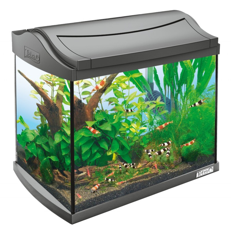 Acquario tetra aquaart led 20 litri for Acquario completo tartarughe