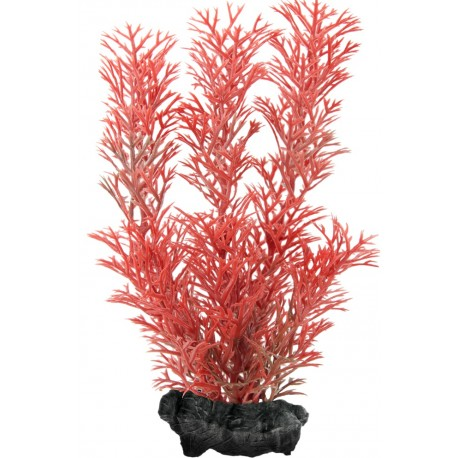 Tetra DecoArt Pianta Red Foxtail M 23 cm per Acquario