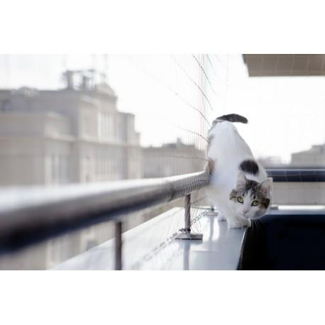 Trixie Rete di Protezione Trasparente per Balconi per Gatti 3 mt