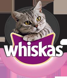 Whiskas cibo per gatti