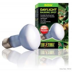 Exo Terra Daylight Basking Spot 50 Watt Lampada Spot Diurna per Rettili