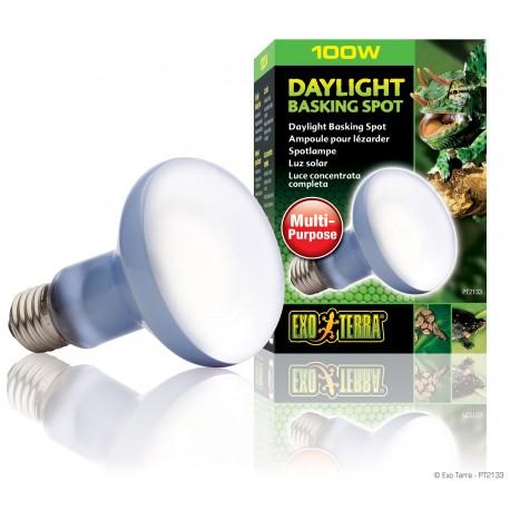 Exo Terra Daylight Basking Spot 100 Watt Lampada Spot Diurna per Rettili