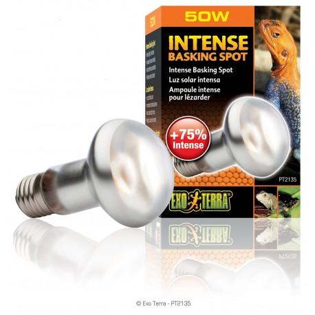 Exo Terra Intense Basking Spot 50 Watt Lampada per Rettili