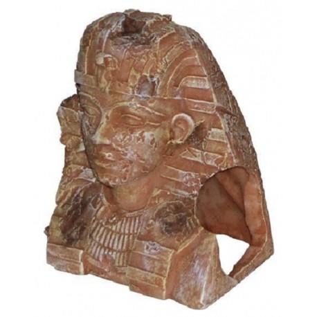 Decoro Faraone per Acquario