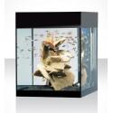 Askoll acquario Pure M LED 44 Litri Nero