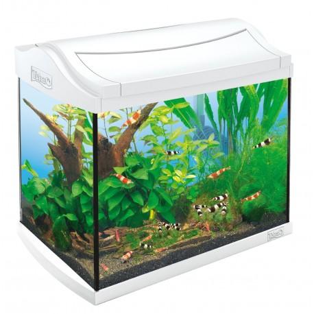 Tetra AquaArt LED 20 Litri Bianco Acquario Completo di Accessori