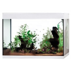 Acquario Askoll Pure XL LED High Cube 130 Litri Bianco