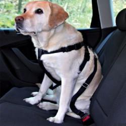 Pettorina e cintura Sicurezza per auto con attacco per cane taglia media
