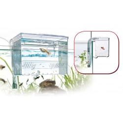 Croci Sala Parto Esterna Large per Pesci Acquario