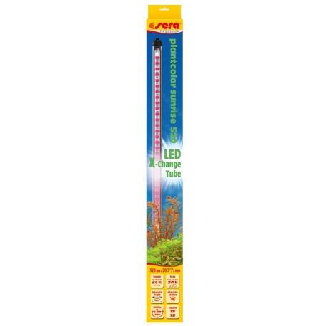Sera LED X-Change Tube Plantcolor Sunrise 520 mm