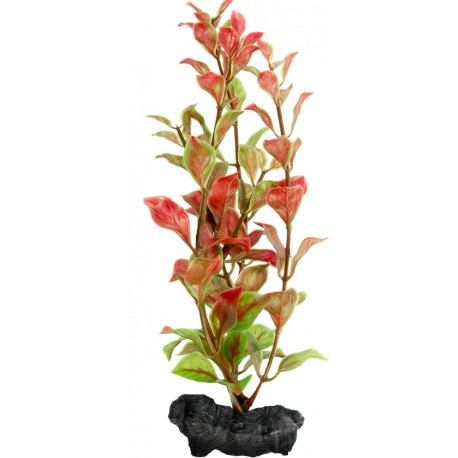 Tetra DecoArt Pianta Red Ludwigia M 23cm per Acquario