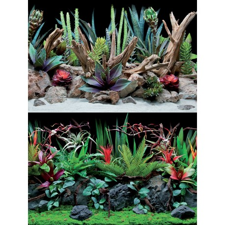 Flora 30 x 60 cm Sfondo Poster Doppio per Acquario