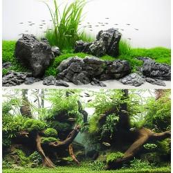 Amazonia 30 x 60 cm Sfondo Poster Doppio per Acquario