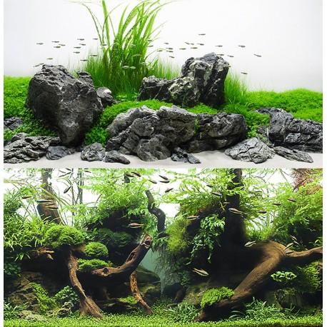 Amazonia 45 x 100 cm Sfondo Poster Doppio per Acquario
