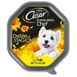 Cesar Scelta dello Chef Delizie di Stagione con Pollo alla Provenzale Cibo per Cane