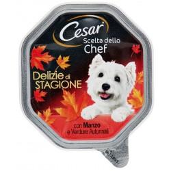 Cesar Scelta dello Chef Delizie di Stagione Manzo con Verdure Autunnali Cibo per Cane