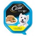Cesar Senior 10+ Pollo e Riso in gelatina Cibo per Cane