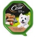 Cesar Cuore di Verdure Patè con Tacchino e Verdure Cibo per Cane