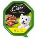 Cesar Cuore di Verdure Patè con Pollo e Verdure Cibo per Cane