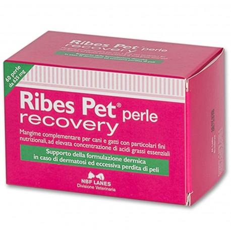 Ribes PET Recovery 60 Perle Integratore per Dermatite Prolungata Cane e Gatto