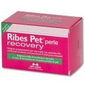 Ribes PET Recovery 60 Perle Mangime Complementare per Dermatite Cane e Gatto
