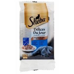 Sheba Delices Du Jour in Salsa Selezione Del Mare 6 x 50 gr