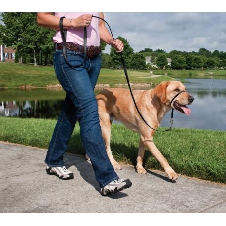 Collare Addestramento a Cavezza Easy Walk Large con Guinzaglio per cane