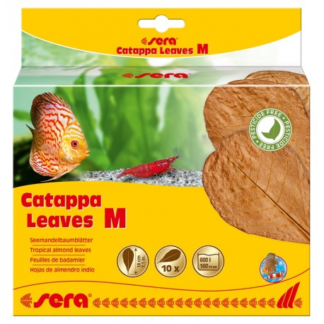 Sera 10 Foglie di Catappa M 18 cm per Pesci Acquario