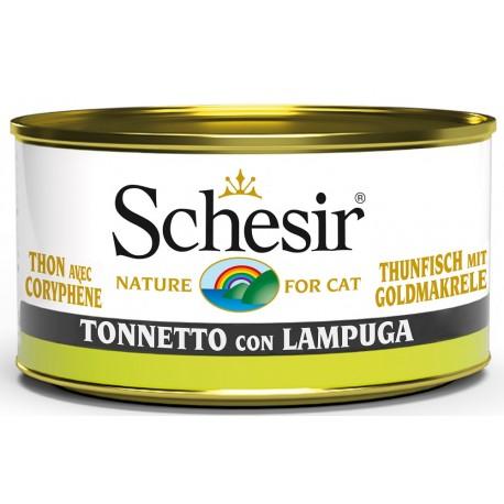 Schesir Cat Tonnetto con Lampuga 85gr Alimento Umido per Gatti