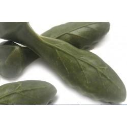 Foglia Medium 5 Snack Vegetale con Clorofilla per pulizia denti Cane
