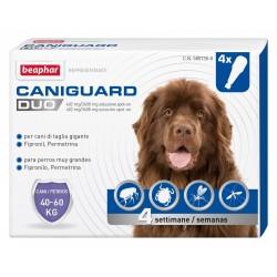 Beaphar Caniguard Duo Antiparassitario 4 fiale per Cani di Taglia Gigante 40-60Kg
