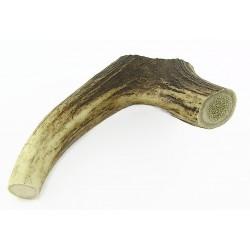 Corno di Cervo Taglia Media 50-75 gr per Cane