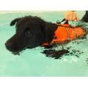 Life Vest giubbotto salvagente per cane