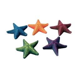 Decoro 1 Stella Marina cm 8,5 per Acquario