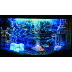Hydor H2Show Atlantis Sfondo + gel decorazione acquario