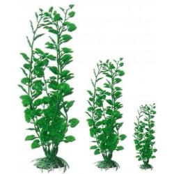 Wave Pianta Hydrocotyle green per acquario formati diversi
