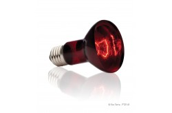 Exo Terra Infrared Basking Spot 50 Watt PT2141