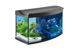 Tetra AquaArt Evolution Line Led acquario 100 litri antracite