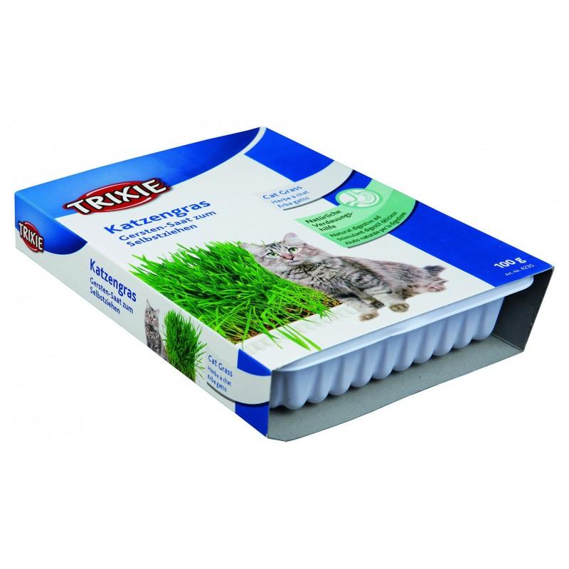 Trixie erba gatto per gatti 100g cod 4235 animal house for Erba per gatti