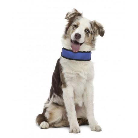 Fresh Collar collare refrigerante in nylon con rete per cane