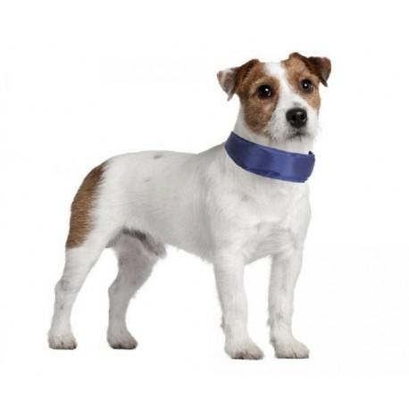 Collare refrigerante per cane di taglia Piccola