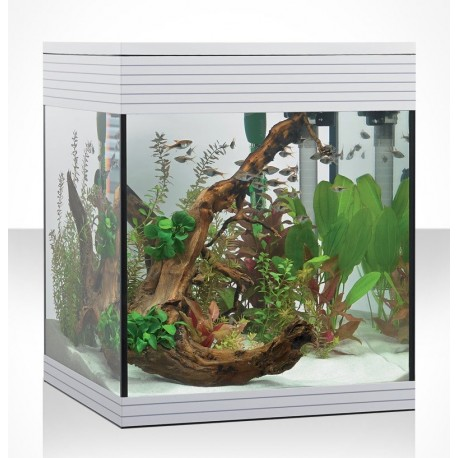 Askoll acquario Pure M LED 44 Litri bianco