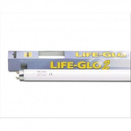 Askoll neon Life Glo T8 14w lampada acquario pesci colori più vivi
