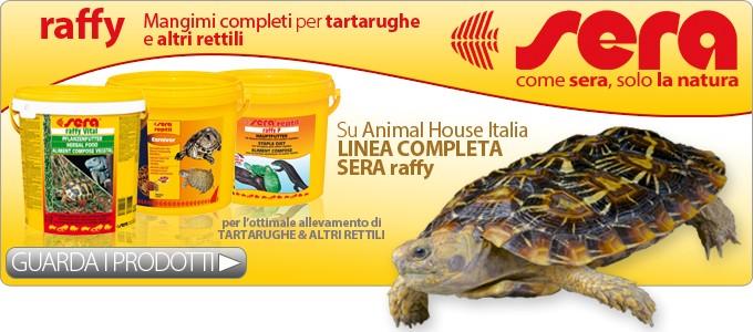 Cibo per tartarughe